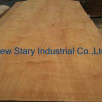 Large picture Rotary Cut Dillenia Veneer