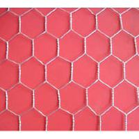 Large picture Hexagonal Wire Netting Gabions