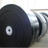 Large picture nylon conveyor belt