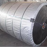 Large picture EP Conveyor Belt