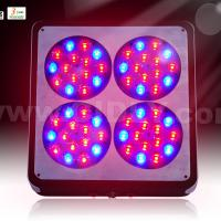 Large picture Apollo 4 led grow light
