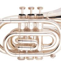 Large picture Pocket trumpet manufacturer with good price