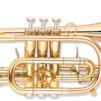 Large picture Cornet factory with good quality and price