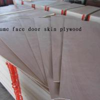 Large picture door skin plywood