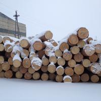 Large picture Russian Pine Logs