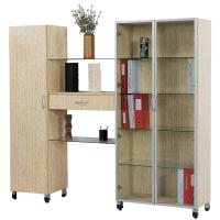 Large picture modern wooden bookcase