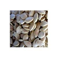 Large picture Pumpkin Seed Extract 4:1,10:1