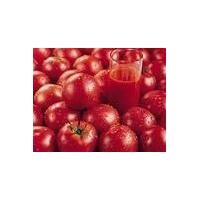 Large picture lycopene, tomato color