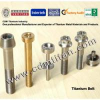Large picture Titanium Colored Bolt