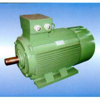 Large picture Y series (IP44/54) pump motor