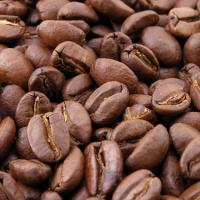 Large picture Organic Coffee