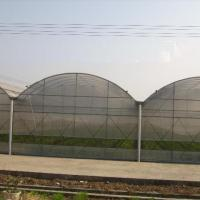 Large picture Multi-span greenhouse film