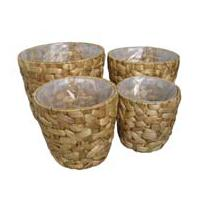 Large picture Water Hyacinth Vase