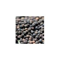 Large picture Vietnam black pepper quotation