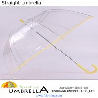 Large picture Transparent PVC Umbrella