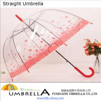 Large picture Transparent Straight Umbrella