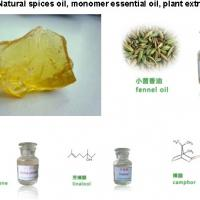 Large picture essential oil, spice oil,plant extract