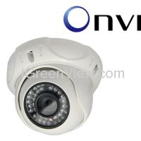 Large picture IGreenView 2 Megapixel Vandal proof Dome IP Camera