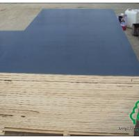 Large picture Chinese film faced plywood/marine plywood