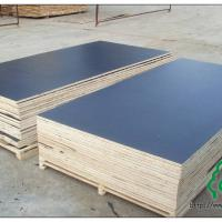 Large picture black film faced plywood