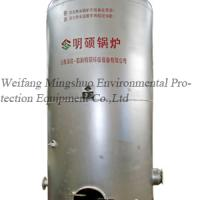 Large picture biogas boiler