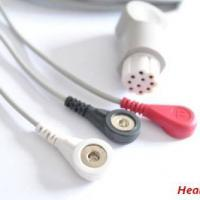 Large picture Datex ECG cable,EKG cable