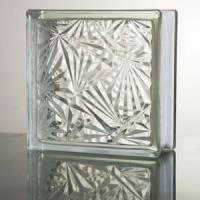 Large picture clear hollow glass brick
