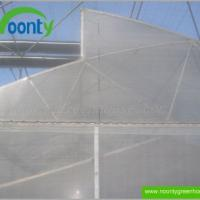 Large picture Saw-Tooth Fixed Roof Greenhouse