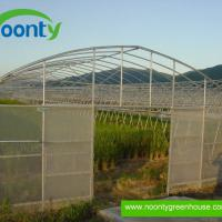 Large picture Single Tunnel Greenhouse
