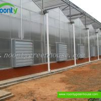 Large picture Venlo Polycarbonate (PC) Greenhouse