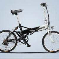 Large picture electric bike