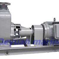 Large picture marine horizontal self-priming centrifugal pump