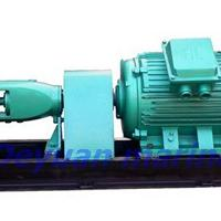 Large picture marine horizontal centrifugal pump
