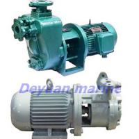 Large picture marine self-priming vortex pump