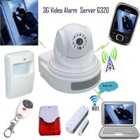 Large picture 3G Video Alarm with PIR