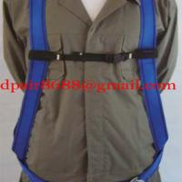Large picture automobile safety belt&safety equipments