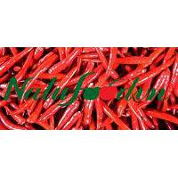 Large picture Red chilli