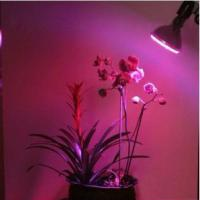 Large picture 12*1W LED Grow Spotlight (CDL-12W)