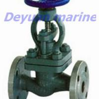 Large picture sea water globe valve