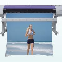 Large picture Solvent Inkjet Printer