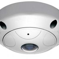 Large picture H.264 2M Fish-Eye Panorama ip Dome Camera