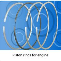 Large picture Piston Rings