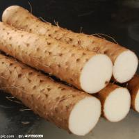 Large picture Wild Yam Extract