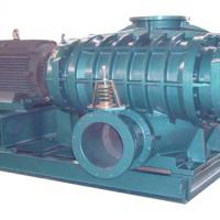 Large picture rotary lobe blower