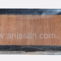 Large picture AIR FILTER