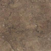 Large picture Mil Brown Egyptian marble