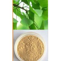 Large picture Ginkgo biloba extract