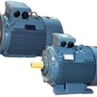 Large picture YE2 electric motor