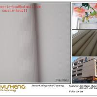 Large picture 3D Effect Stretch Ceiling Fabric