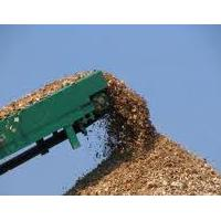 Large picture EUCALYTUS WOOD CHIP